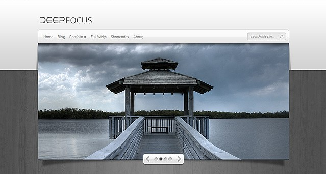 Removing 'From the Blog' from Elegant Themes Deepfocus